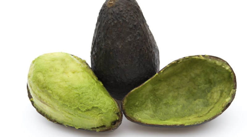 L'incroyable secret de l'avocat